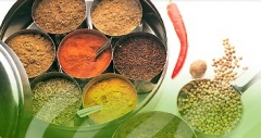 Spices & Herbs from around the World in Torrevieja